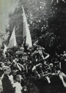 Dożynki powiatowe w Białej Podlaskiej [fotografia]