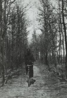 Droga przez Zofilas w Białej Podlaskiej [fotografia]