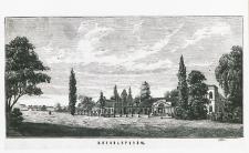 Pałac w Konstantynowie [fotografia]