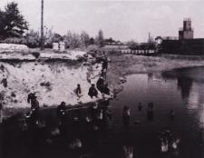 Krzna w Białej Podlaskiej w rejonie rozebranego starego mostu [fotografia]