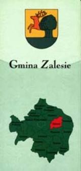 Bialski informator samorządowy: gmina Zalesie