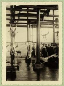 Rzeźnia miejska w Białej Podlaskiej [dokument ikonograficzny]