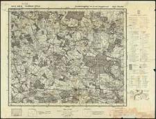 Mapa topograficzna Polski : Biała Podlaska Pas 40 Słup 36
